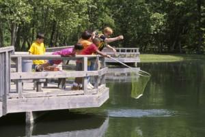 dospelí, deti, vychutnať, poludnie, Rybolov, rybník