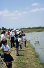 adultes, les enfants, profiter, beau, jour, pêche