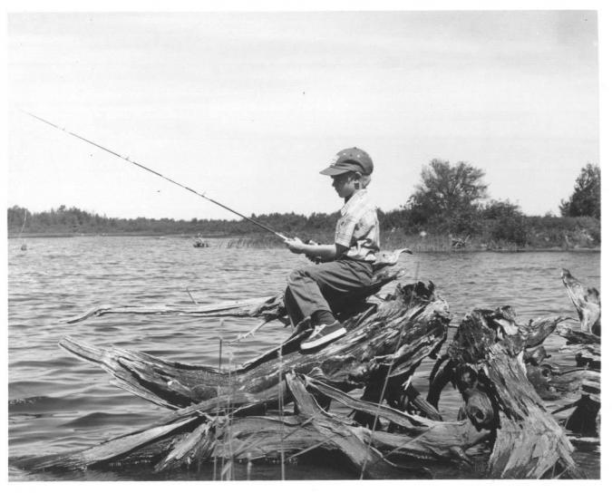 garçon, pêche, noir et blanc, image