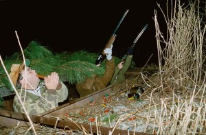 camouflaged, hunters, hunt, birds, night