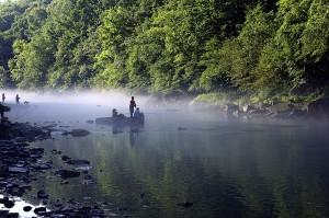 barn, fiske, avstand, gratis, fiske, hendelse