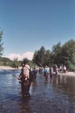 combat, fishing, king, salmon