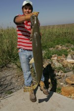 Fischer, junge, zeigt, große Fang