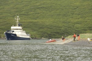 pêcheur, tirant, bateau, côte