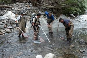 Fischer, Errichtung von Dämmen, flach, schnell, Gebirge, Fluss, Fangen, Fisch, Netz