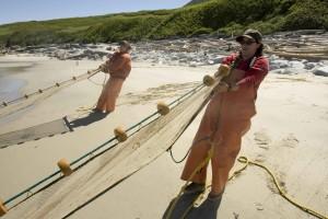 rybárov, vytiahnuť, siete, more, pobrežie