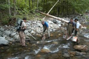 Fischer, elektrische Stimulation, fangen, Fisch, flacher, Fluss