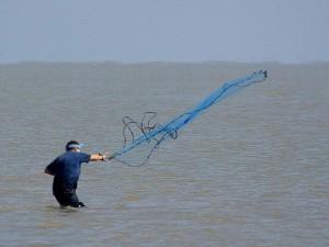 fishing, net