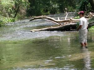 mouche, pêcheur, pêche, rapide, ruisseau
