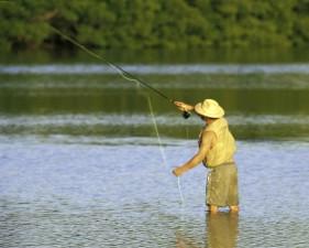 mouche, pêcheur, l'eau, la pêche
