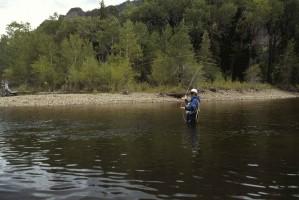 mouche, pêcheur, des stands, l'eau, la pêche