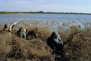 les chasseurs, la chasse, la sauvagine, les oiseaux, marais