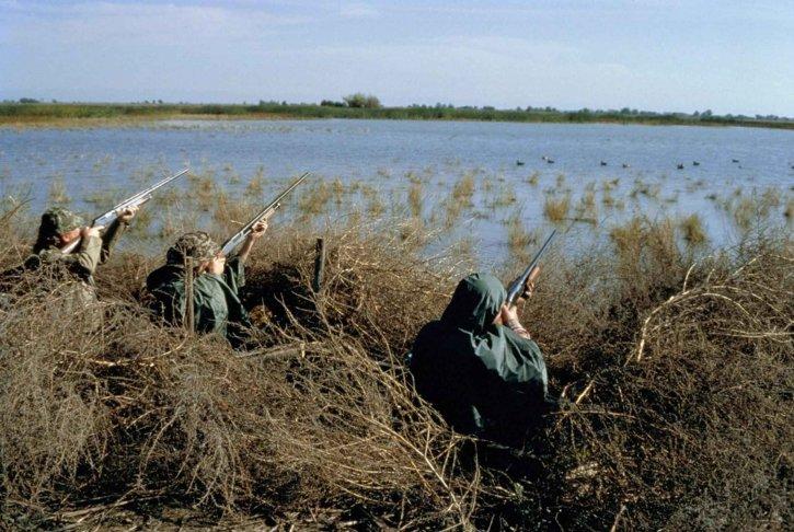 Avcılar, avcılık, su kuşları, kuşlar, bataklık