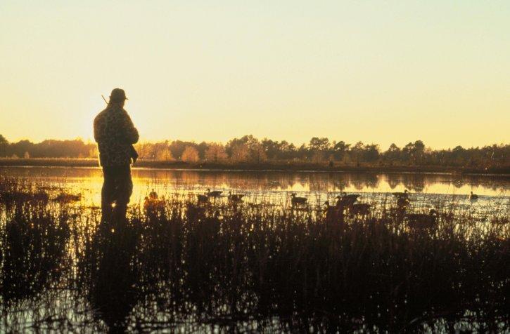 hunting, sunset