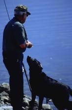 man, fishes, dog, side