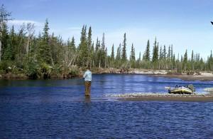 hombre, pesca con mosca, Grayling, montaña, río