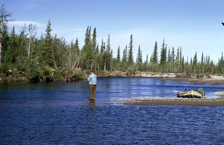 homme, flyfishing, ombre, montagne, rivière