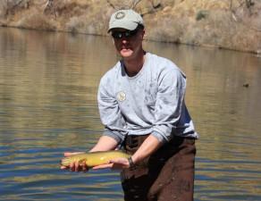 person, releasing, gila, trout, fish