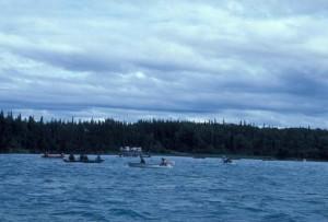 rivière, canotage, pêche