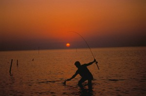 silhouette, fisherman, sea, water, sunset