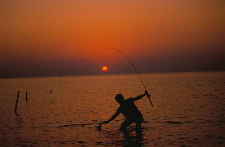 silueta, ribar, more, vode, zalazak sunca