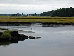 silhouette, fisherman, water, distance