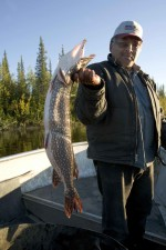 subsistence, caught, northern pike