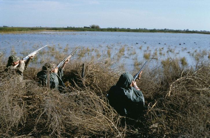 three, camouflaged, hunters, waterfowl