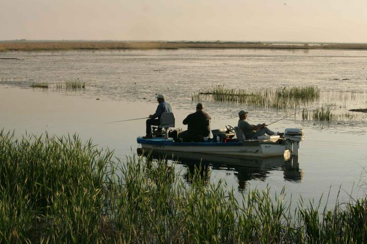 three, men, bass, boat, relaxing, late, noon, fishing, quiet, water