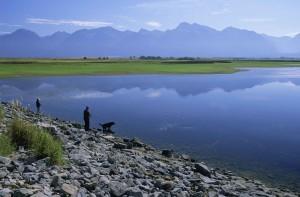 to, fisker, lake, hunden