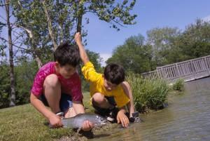 deux, jeunes garçons, catch, arc en ciel, la truite, le poisson