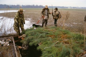 waterfowl, hunters, camouflage, clothing, ducks, dog