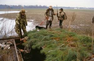 waterfowl, hunters, camouflage, clothing, ducks, dog