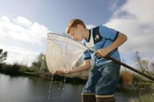 jeune garçon, les prises, les poissons, à proximité