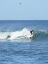 Surfer, groß, surfen