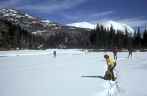 people enjoying, snowshoeing, winter