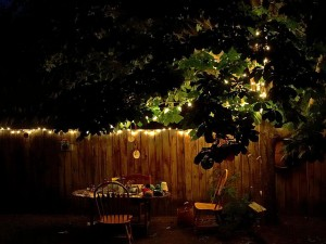 backyard, table, night