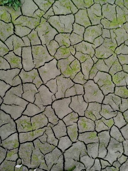 dry, cracks, earth, texture