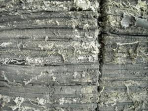 fiber, texture