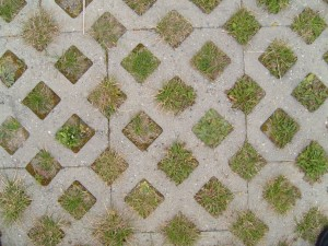 grass, paver, paving