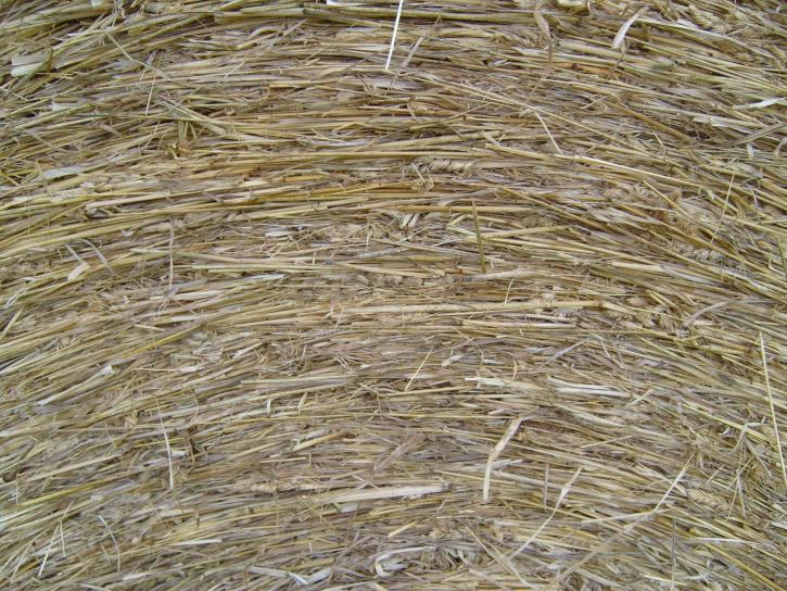 hay, roll, close