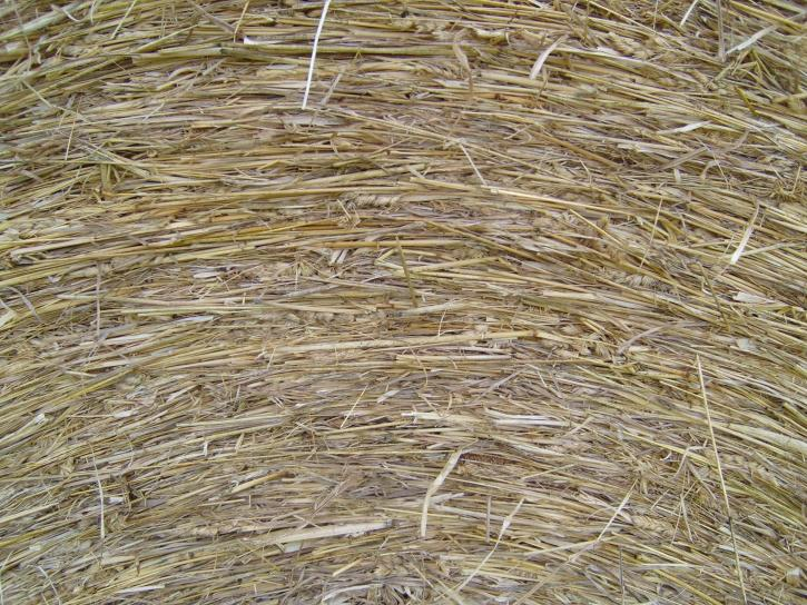 hay, roll, macro