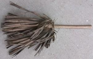 dead, palm, leaf