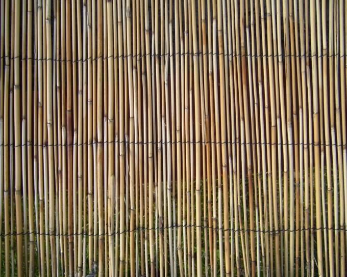 Free Picture Reed Rushmat Rush Mat Pattern
