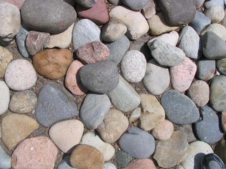 Mijn hond eet stenen; hoe leer ik dat af?