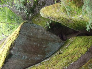 mossy, rock, texture