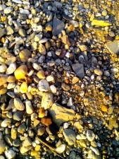 cailloux, plage, texture