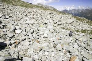 rocks, ground, pattern