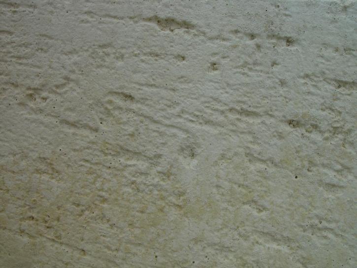 scié, calcaire, texture