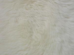 peau de mouton, bacground